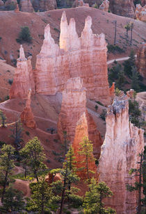 Utah, Bryce Canyon National Park, Bryce Canyon and Hoodoos by Danita Delimont