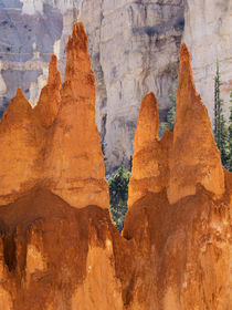 Utah, Bryce Canyon National Park, Bryce Canyon and Hoodoos a... by Danita Delimont