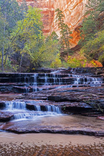 Utah, Zion National Park, water cascading through Left Fork ... von Danita Delimont