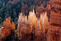 Utah, Bryce Canyon National Park, Bryce Canyon and Hoodoos von Danita Delimont
