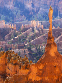 Utah, Bryce Canyon National Park, The Sentinel by Danita Delimont