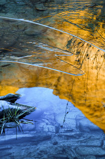 Usa, Utah, Icy Reflections of canyon wall in stream in Hunte... by Danita Delimont