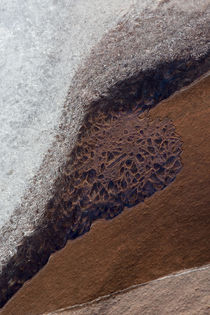 USA, Utah, Rill Creek, Abstract Nature by Danita Delimont
