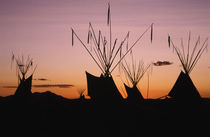 USA, Utah, Logan, Teepee at dusk by Danita Delimont