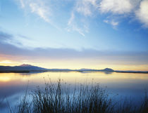 USA, Utah, Cache Valley, Great Basin, View of Bear river at dusk by Danita Delimont