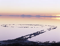 USA, Utah, Spiral jetty above Great salt lake von Danita Delimont
