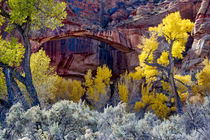 Grand Staircase-Escalante National Monument, Utah, USA von Danita Delimont