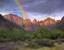 Rainbow at Towers of the Virgin, Zion National Park, Utah von Danita Delimont