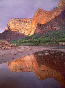 Sunset at Zion Canyon, Zion National Park, Utah by Danita Delimont