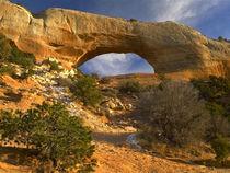 Wilson Arch, Utah von Danita Delimont