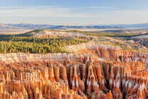 Hoodoos tower at Sunrise Point at Bryce Canyon National Park by Danita Delimont
