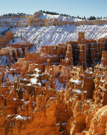 USA, Utah, Bryce Canyon National Park, View of sunset point at morning von Danita Delimont