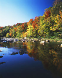 USA, Vermont, Autumn trees reflected in Deerfield River von Danita Delimont