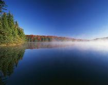 USA, Vermont, Adams Reservoir, Woodford State Park, Autumn t... von Danita Delimont