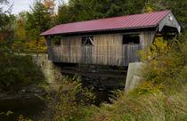 USA, Vermont, Johnson by Danita Delimont