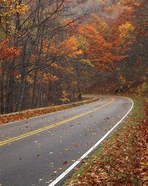 USA, Virginia, Shenandoah National Park, Skyline Drive by Danita Delimont