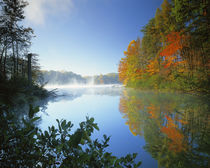 USA, Virginia, Fairy Stone State Park, Fairy Stone Lake by Danita Delimont