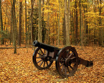 USA, Virginia, Colonial National Historical Park, Cannon at Yorktown by Danita Delimont