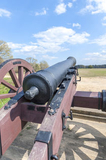 USA, Virginia, Yorktown, cannon on battlefield von Danita Delimont