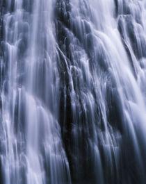 USA, Washington State, Mount Rainier National Park, View of ... von Danita Delimont
