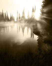 USA, Washington State, Mt Rainier National Park, Sunbeam alo... by Danita Delimont
