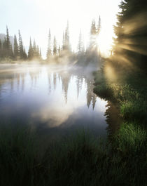 USA, Washington State, Mt Rainier National Park, Sunbeam alo... von Danita Delimont