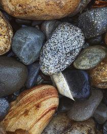 USA, Washington, Okanogan-Wenatchee National Forest, methow ... by Danita Delimont