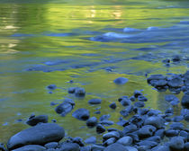 USA, Washington, Olympic National Park, Reflections in the Elwha River von Danita Delimont