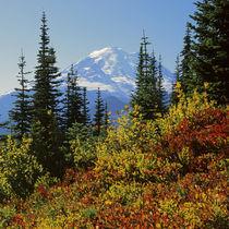 USA, Washington, Mt von Danita Delimont