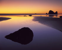 USA, Washington, Olympic Peninsula, Pacific Beach von Danita Delimont