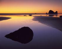 USA, Washington, Olympic Peninsula, Pacific Beach by Danita Delimont