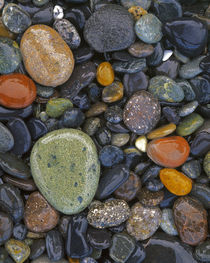USA, Washington, Lopez Island, Agate Beach County, Stones by Danita Delimont
