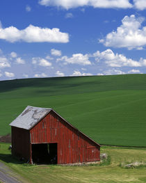 USA, Washington, Whitman County, Barn and Spring Fields von Danita Delimont