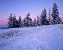 USA, Washington, Spokane County, Browne Mountain von Danita Delimont