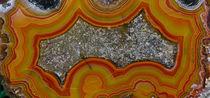 Banded Agate, Sammamish, Washington von Danita Delimont