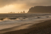 United States, Washington State, Olympic National Park, Ruby Beach von Danita Delimont