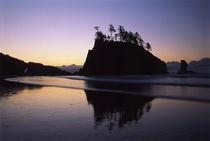 USA, Washington State, Second Beach, Olympic National Park, ... von Danita Delimont