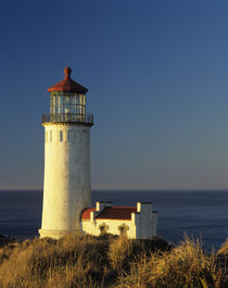 WA, Cape Disappointment State Park, North Head Lighthouse, e... by Danita Delimont
