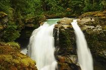Hooksack Falls, Mount Baker-Snoqualmie National Forest, Wash... von Danita Delimont