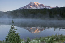 Sunrise, Mount Rainier, Reflection Lake, Mount Rainier Natio... von Danita Delimont