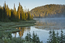 Sunrise, Reflection Lake, Mount Rainier National Park, Washington, USA by Danita Delimont
