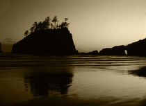 USA, Washington State, Olympic National Park, View of Second beach von Danita Delimont