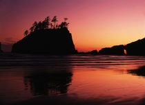 USA, Washington State, Olympic National Park, View of Second beach by Danita Delimont