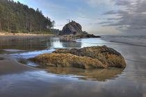 Low tide von Danita Delimont