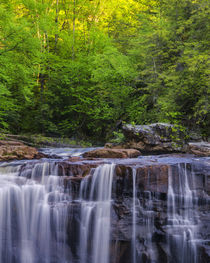USA, West Virginia, Davis, Blackwater Falls by Danita Delimont