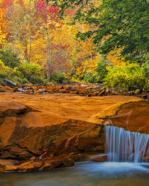 USA, West Virginia, Douglass Falls by Danita Delimont