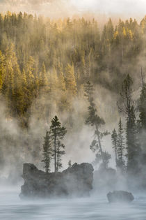 Boulders and trees in steaming Yellowstone River at sunrise,... by Danita Delimont