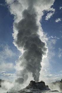 Castle Geyser erupting, Upper Geyser Basin, Yellowstone Nati... by Danita Delimont