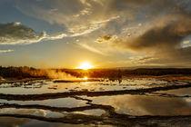 Great Fountain Geyser at sunset, Lower Geyser Basin, Yellows... von Danita Delimont