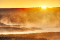 Steaming Madison River at Madison Junction, Yellowstone Nati... von Danita Delimont